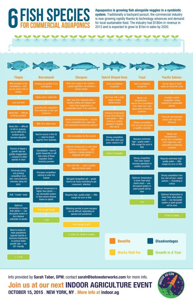 Indoor-Ag-Con-Aquaponics-Infographics-rev6-9-15-658x1024